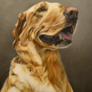 Jakob, Oil Paint on Canvas, 16″x20″