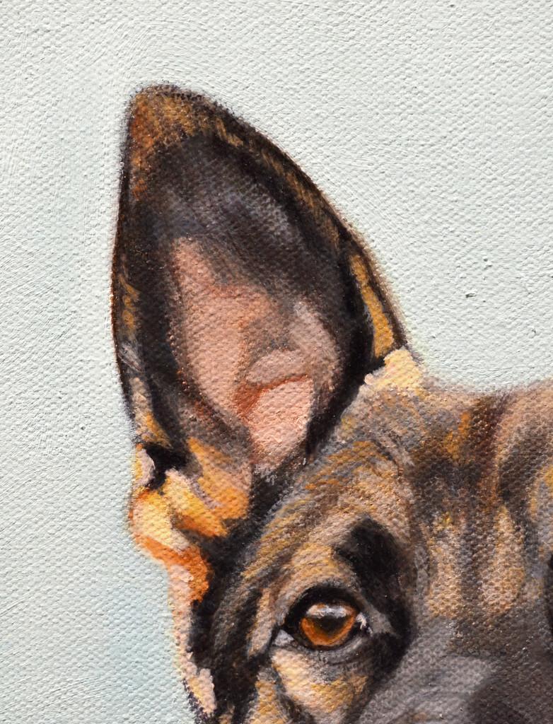 Dexter Detail1