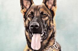 Dexter, Oil Paint on Canvas, 12″x12″