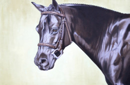 Saddle Sold Separately, Oil Painting on Canvas, 18″x24″