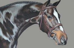 Karmin, Oil Painting, 16″x20″