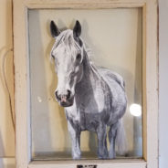 Grey horse, Window Painting